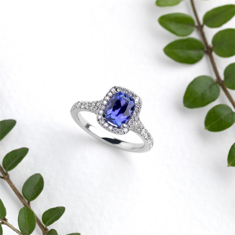 Platinum Cushion Cut Tanzanite and Diamond Halo Dress Ring Thumbnail Image 1